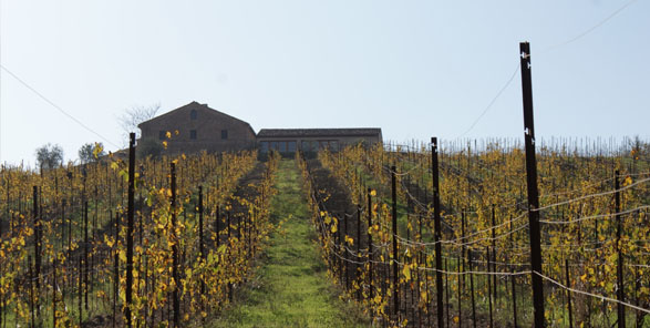 """the view outside """"Pievalta"""" Winery"""